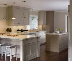 kitchen design bay area. transitional single line taupe kitchen, grey cabinets, $50,000 - $100,000, kimberly larzelere, kitchen design bay area e