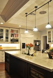 track lighting for kitchens. Pendant Track Lighting Kitchen Traditional With Cabinet Front Refrigerator Coffered For Kitchens I