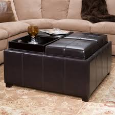 Living Room Ottomans Storage Ottoman With Tray Living Room Contemporary With 2 Tray Top
