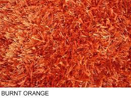 burnt orange rug ikea rugs ideas bathroom fresh teal and grey furry area outdoor turquoise