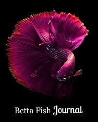 Betta Fish Journal Purple Betta Swimming On Black