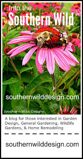 Small Picture 43 best Edibles in the Landscape images on Pinterest Edible