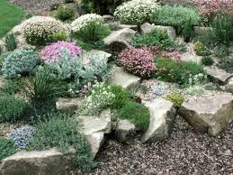 Small Picture Best 25 Rockery garden ideas on Pinterest Succulent rock garden