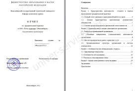 Отчет по практике в бюджетном учреждении список литературы практика дневник 2 з о 3