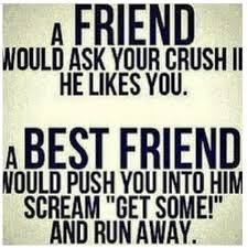 Best Friend Funny Quotes Delectable Top 48 Funny Best Friend Quotes Sarcastic Quotes Pinterest
