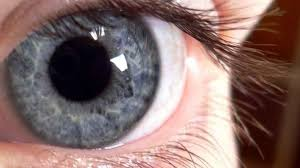 Grey Eyes Learn About A Rare Smokey Eye Color Guy