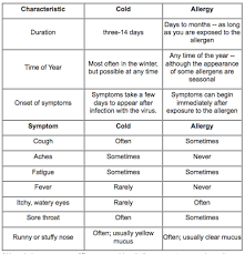 Is it Allergies or a Cold? - Perachanel360