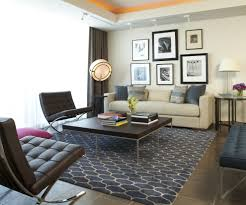 houzz area rugs. Area Rugs Houzz Living Room Modern With Neutral Colors Tile Regard To Wall Art Home Accecories Dining For Spaces Plush Rug Stores Bedroom Taupe Color Black 2
