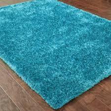 aqua and grey rug