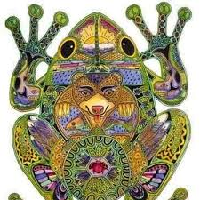 Kambo Frog Medicine Healing Music by EEMAHEENA on SoundCloud - Hear the world's sounds