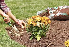 how to plant garden. Mulch Garden Bed - How To Plant Flowers