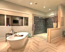 open shower concepts. Open Shower Concepts Designs Concept Bathroom Design With Goodly Ideas Pictures Remodel And Decor Plans Id .