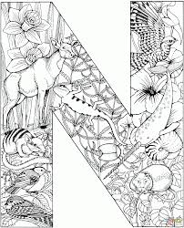 free letter n coloring pages for cure draw is noah page with
