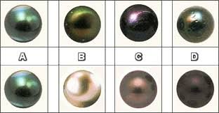 Pearl Grading Chart Learn To Choose A Pearl