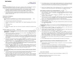 Are Professional Resume Services Worth It Free Resume Example