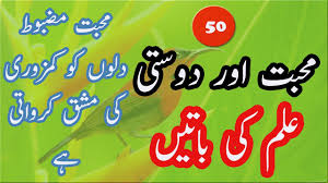 Muhabbat Our Dosti Kia Hay Ilm Ki Batain Urdu Best Quotes Golden Words By Pk Voice