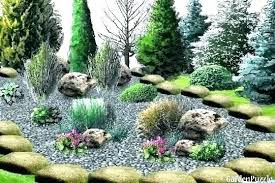 big rocks for garden large landscaping impressive with where