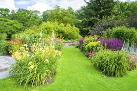Image result for perennial plants idea