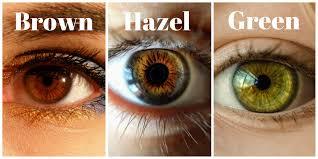Dark Brown To Light Brown Eyes What Is The Best Hair Color For Hazel Eyes Hair Adviser