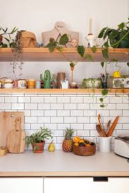Awesome Kitchen Wall Shelves With New Plants