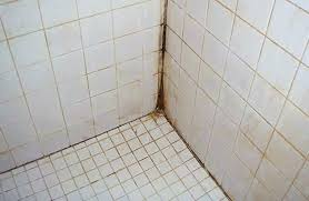 bathroom grout cleaner how to clean shower grout mildew cleaning tile shower cleaning tile shower exquisite