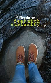 Curiosity Quotes 100 Best Curiosity Quotes Images 25