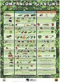 Free Companion Planting Chart Companion Planting Chart