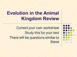 Evolution in the Animal Kingdom Review - ppt video online download