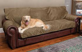 best sofa for dogs. Sofa Covers For Dogs Design Pet Best Protector Leather Countoured Arm L