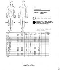 Laser Burning Chart How Is Burn Size Estimated In The Initial Evaluation Of The