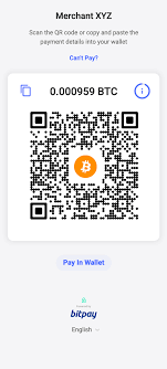 Simplistically, bitcoin wallets can be divided into 5 types: How Do I Pay A Bitpay Invoice Bitpay Support