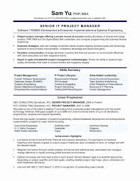 Ceo Resume Sample Ceo Resume Template Unique Sample Ceo Cover Letter Colesecolossus 52