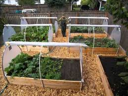 Small Picture Backyard Vegetable Garden Design Ideas I Vegetable Garden Designs