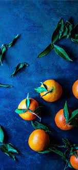 Best Orange iPhone 11 HD Wallpapers ...