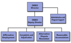 Organizational Chart About Us Oeeo