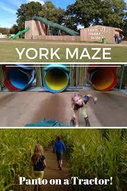 york maze. york maze - panto on a tractor y