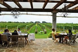 Image result for Roanoke Vineyards