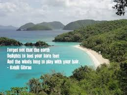 Beautiful Island Quotes