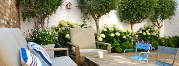 Courtyard Plants Design Large Small Courtyard Design In London Hampstead Garden