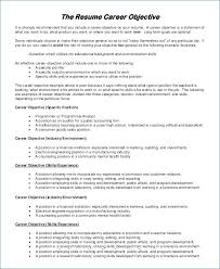 Accountant Resume Objective Good Example Resume Objective