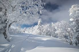 Enchanting Winter Scenes From Russias Largest Island Sakhalin