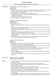 Evaluation Consultant Resume Samples | Velvet Jobs