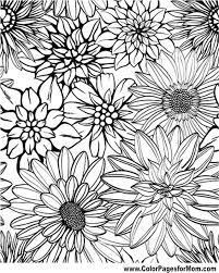 Small Picture Adult Coloring Pages Flowers chuckbuttcom