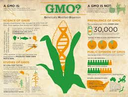 gmo vs gene editing vs genetic engineering nanalyze gmo vs gene editing