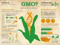 gmo vs gene editing vs genetic engineering nanalyze gmo vs gene editing