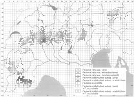 The Acidophilous Taxa of the Festuca varia Group in the Alps: New ...