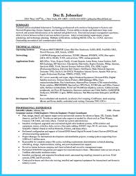 Information Technology Resume Examples Extraordinary It Resume