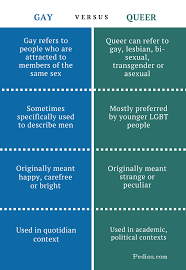 Difference between gay and queer