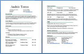 sample 2 page resume converza co