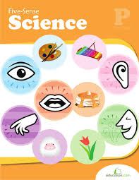 The Human Body   The 5 Senses Worksheets   A Wellspring also The five senses worksheets for preschools also My Five Senses   Lesson Plan   Education likewise The five senses worksheets for preschools further The five senses worksheets for preschools besides  also Our Five Senses  Touch   Worksheet   Education likewise Sense of Sight   Worksheet   Education besides  additionally Senses and Feelings   Worksheet   Education further . on the five senses worksheets for preschools science of smell worksheet